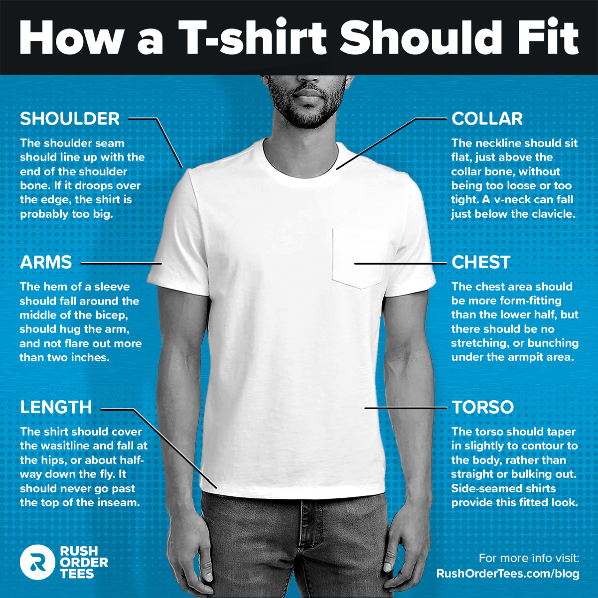 How a T-shirt should fit - infographic